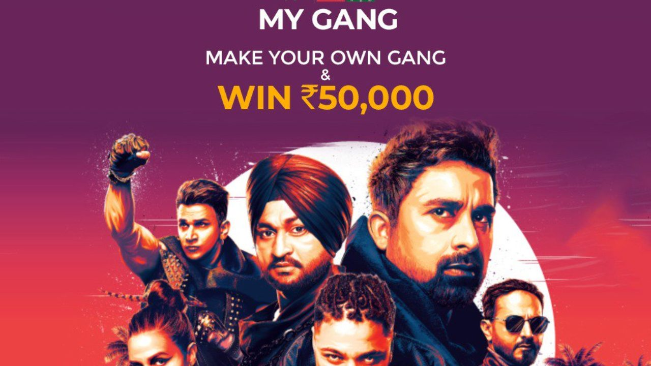 MTV Roadies Real Heroes 19th May 2019 Episode Updates Vote Out